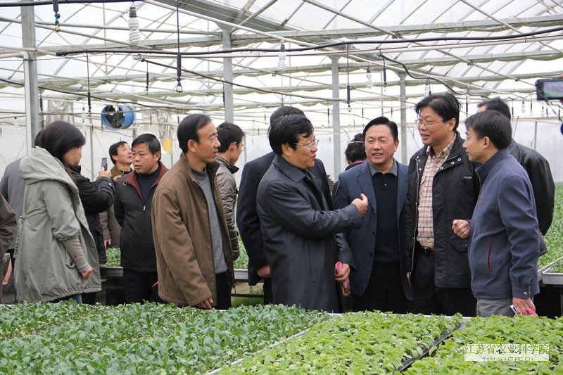 Seminar Held by Jiangsu Cooperative Organization for Vegetable Crops Innovation (Preparatory) Held in Yangzhou