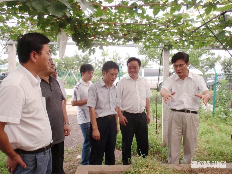 JAAS President Yan Shaohua inspected Yuhuang Mountain Test Station in Xuyi