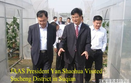 JAAS President Yan Shaohua Visited Sucheng District in Suqian