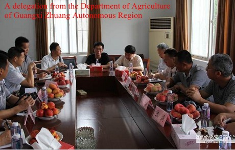 A delegation from the Department of Agriculture of Guangxi Zhuang Autonomous Region