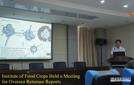 Institute of Food Crops Held a Meeting for Oversea Returnee Reports
