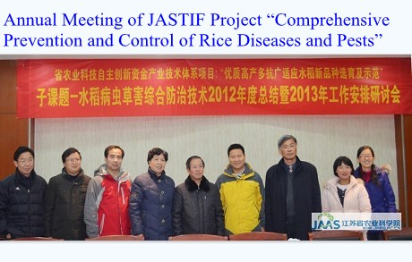 "Annual Meeting of JASTIF Project ""Comprehensive Prevention and Control of Rice Diseases and Pests"""