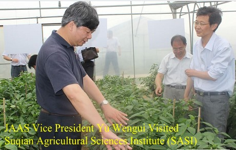 JAAS Vice President Yu Wengui Visited Suqian Agricultural Sciences Institute (SASI)