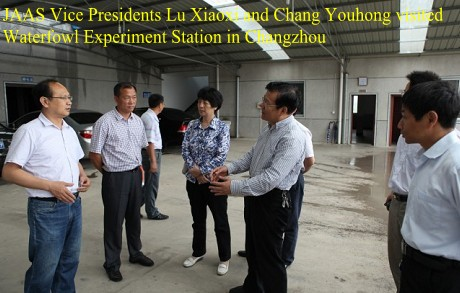 JAAS Vice Presidents Lu Xiaoxi and Chang Youhong visited Waterfowl Experiment Station in Changzhou