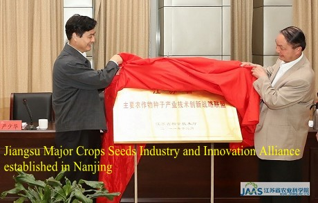 Jiangsu Major Crops Seeds Industry and Innovation Alliance established in Nanjing