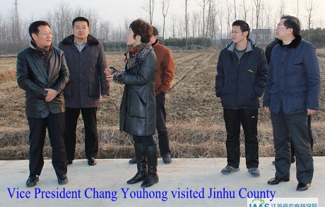 Vice President Chang Youhong visited Jinhu County