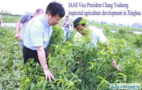 JAAS Vice President Chang Youhong 