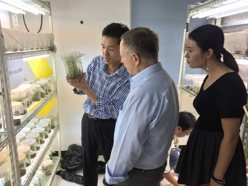 <p>An academic visit to JAAS by Prof. George P. Kotch from International Rice Research Institute(IRRI)</p>
